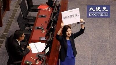 「送中引渡惡法」容海恩擔當建制派唯一舉牌女郎出席泛民草案委員會