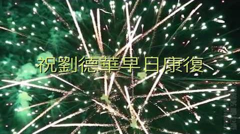 【祝 劉德華 早日康復】My Love Andy Lau 劉德華 World Tour Hong Kong|真我的風采|如果有一天|蘋果廣告製作公司|