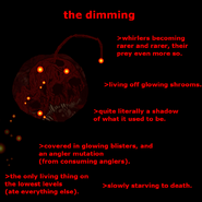The Dimming (Taken DD Canon)