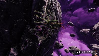Lifeform-LightningOrchid2.png