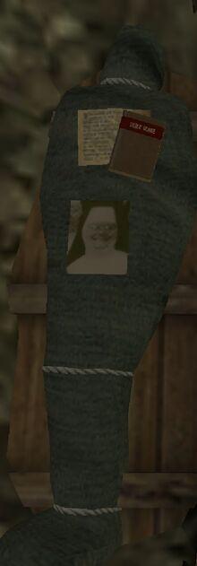 Screenshot 20200508-101445 Evil Nun.jpg