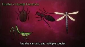 Evolution of Chimera Ants HD