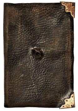 Tom Riddle's Diary.jpg