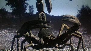 Scorpiochs