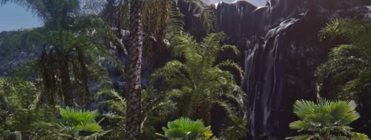Jungle Dimension