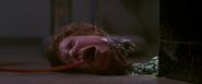 Norris-Thing head (1) - The Thing (1982)