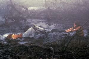 Swamp of Sadness