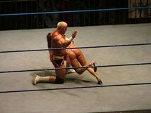 Guest referee (8)