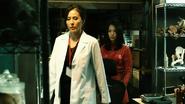 Dr Klein 5 - 009-1