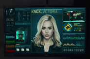 Victoria Knox Info