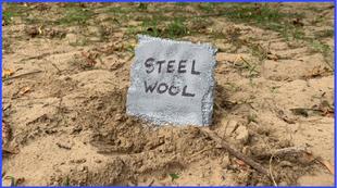 SteelWoolGrave