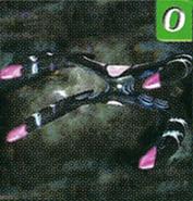 Polaris Arachnid CD