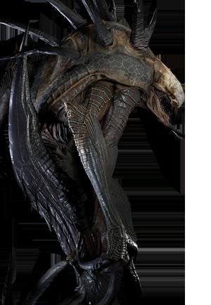 wraith official evolve wiki