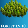Forest10.png