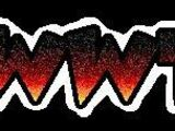 World Wrestling Television