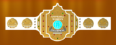 Universal womens title.png