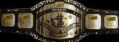 IW Belt.png