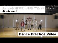 BALLISTIK BOYZ from EXILE TRIBE - 「Animal」 - Dance Practice Video -