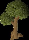 Normaltree.png
