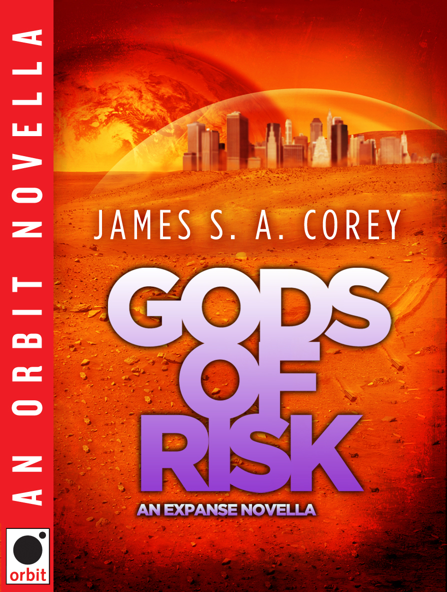 Gods of Risk (first edition).jpg