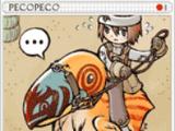 Pecopeco Card