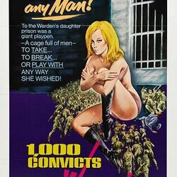 Sexploitation Film