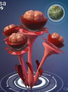 Lovely NMS
