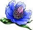 Icon-Dream Blossom.png