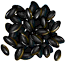 Icon-Nano Seeds.png