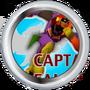 ¡Capitan Falcon!
