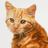 Лаванда555's avatar