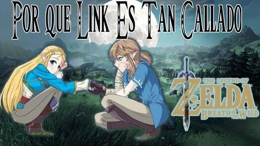 Por que link no habla (diario de la princesa zelda)