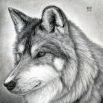 IIxXAJXxII's avatar