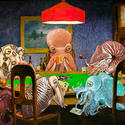 Cephalopods Playing Poker