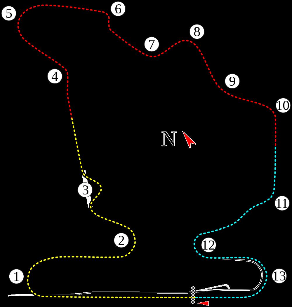 1989 Hungarian Grand Prix