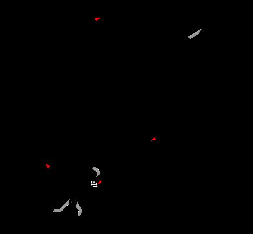 1938 German Grand Prix