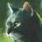 Snowclaw123's avatar