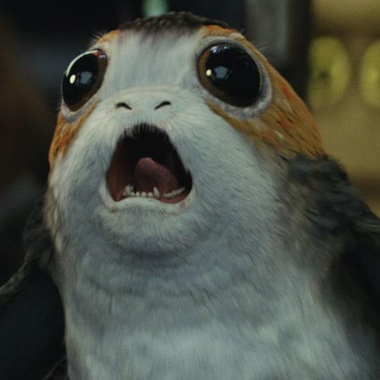 IdioticPorg's avatar