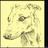 Luckyanimaljam's avatar