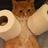 FluffAndStuff's avatar