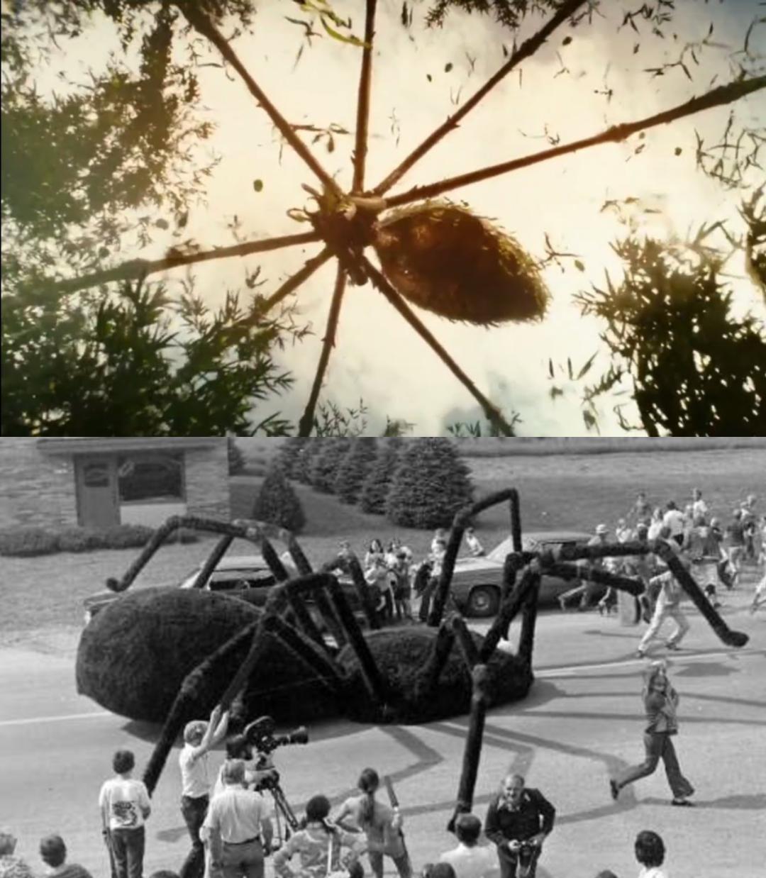 Mother Longleg vs Gignt Spider