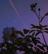 Cloudydays6's avatar