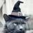 Person135's avatar