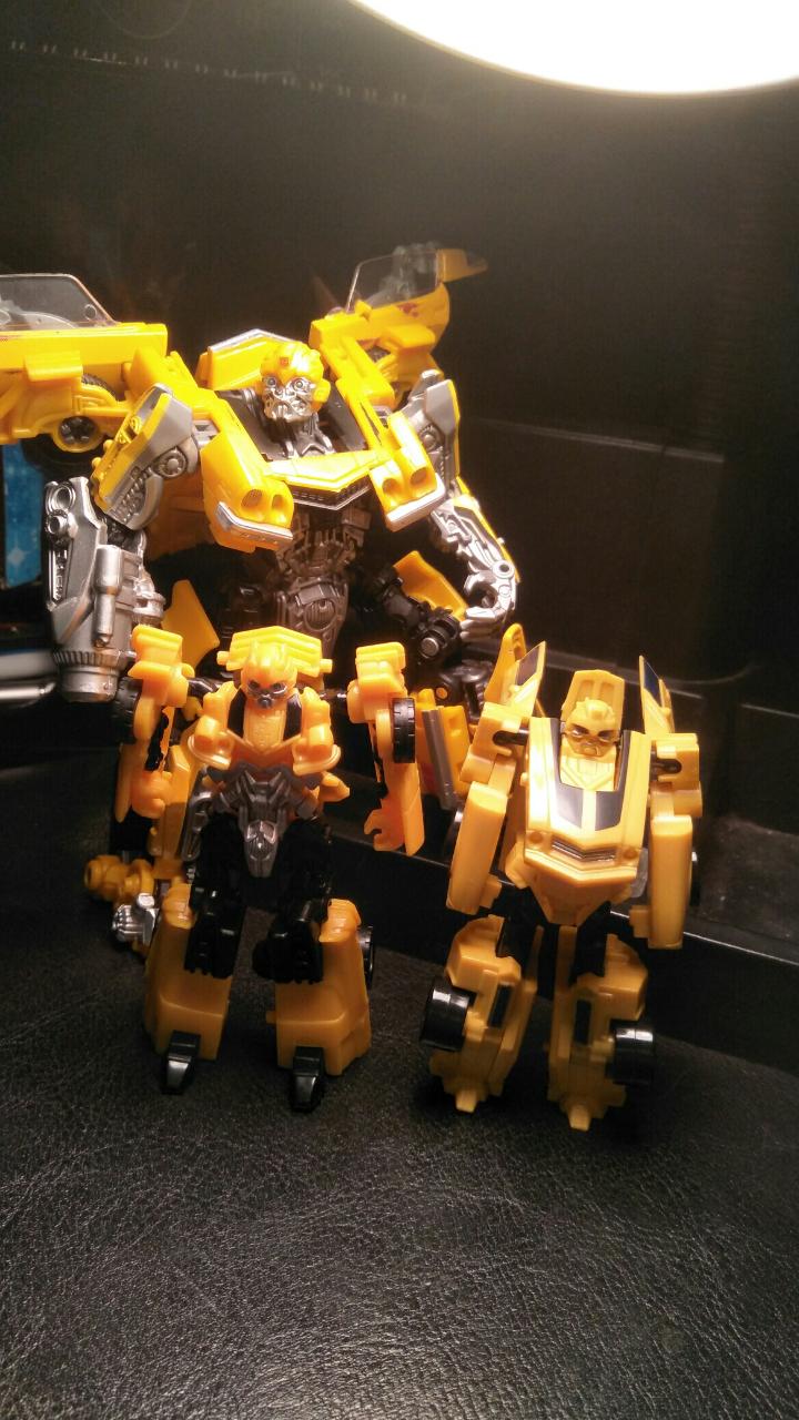 Camero bumblebees