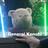 Neetaku's avatar