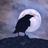 Ravenrook's avatar