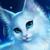 Snowy.flower warriorcats