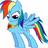 Rainbow-Dash the Pegasi's avatar