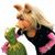 Kermit T Frog