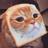 ShiningDucky's avatar